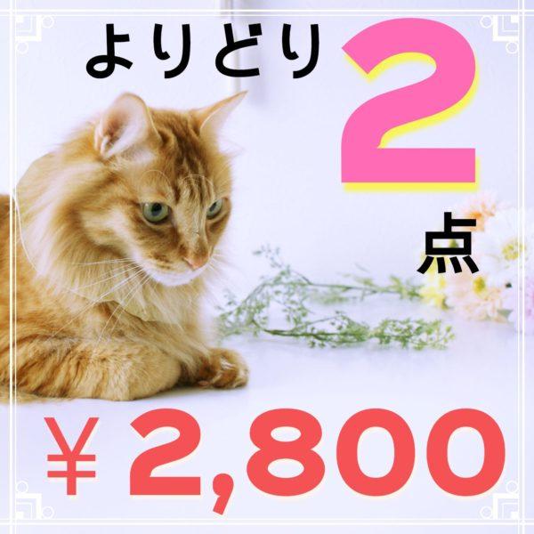 大謝恩猫の日セール